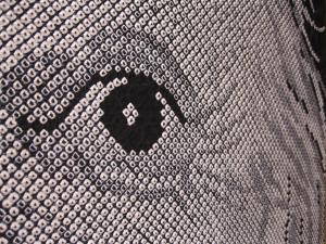 アインシュタインの目のサムネール画像